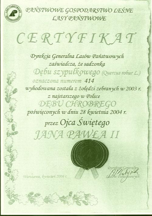 Certyfikat.jpeg
